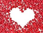 Petal heart: fragility of life